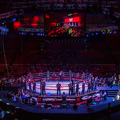 MMC- It is the fusion of Sanda, boxing, Thai boxing, MMA international fighting events